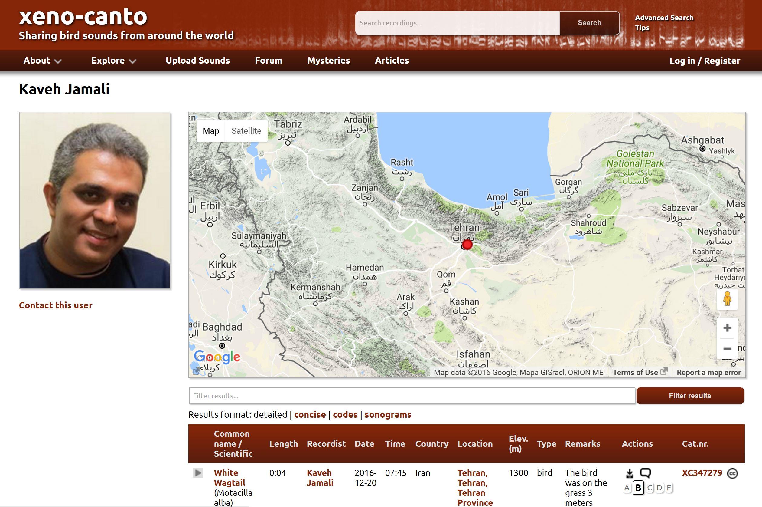 Kaveh Jamali's Profile